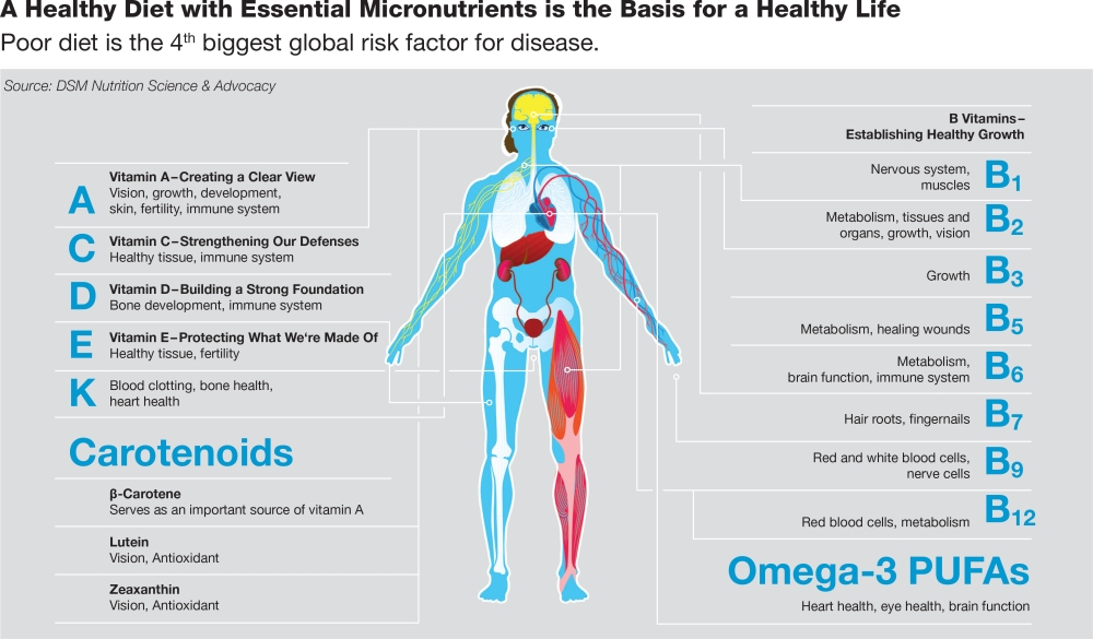 A healthy diet with essential micronutrients is the basis for a healthy life