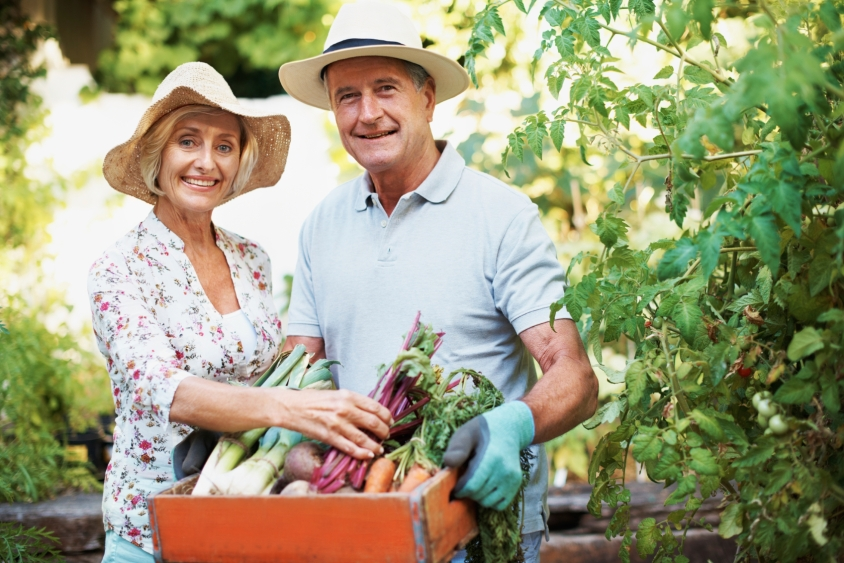 Portrait of a happy senior couple holding a basket of fresh produce while standing in their garden